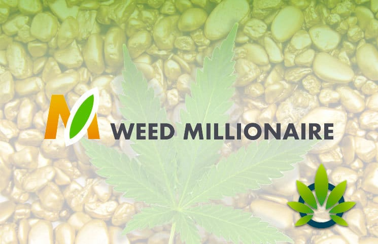 Overview Weed Millionaire in Europe